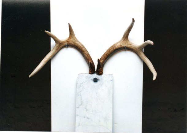 marble with horns