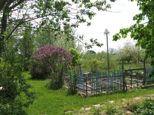 010-garden_e